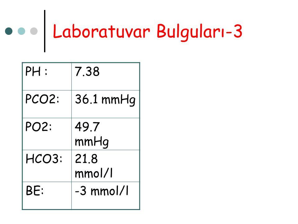 Laboratuvar Bulguları-3