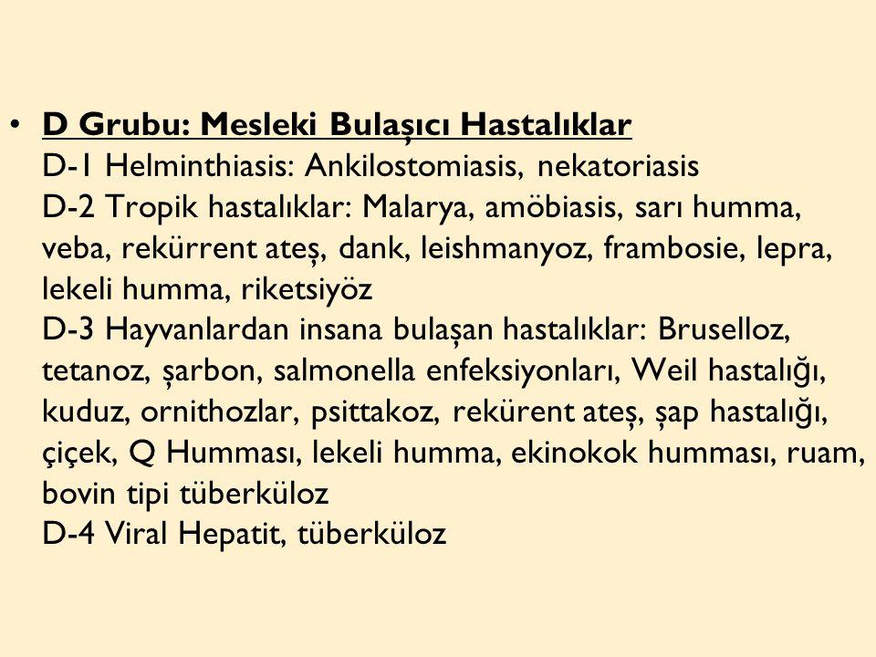 D Grubu: Mesleki Bulaşıcı Hastalıklar D-1 Helminthiasis: Ankilostomiasis, nekatoriasis D-2 Tropik hastalıklar: Malarya, amöbiasis, sarı humma, veba, rekürrent ateş, dank, leishmanyoz, frambosie, lepra, lekeli humma, riketsiyöz D-3 Hayvanlardan insana bulaşan hastalıklar: Bruselloz, tetanoz, şarbon, salmonella enfeksiyonları, Weil hastalığı, kuduz, ornithozlar, psittakoz, rekürent ateş, şap hastalığı, çiçek, Q Humması, lekeli humma, ekinokok humması, ruam, bovin tipi tüberküloz D-4 Viral Hepatit, tüberküloz