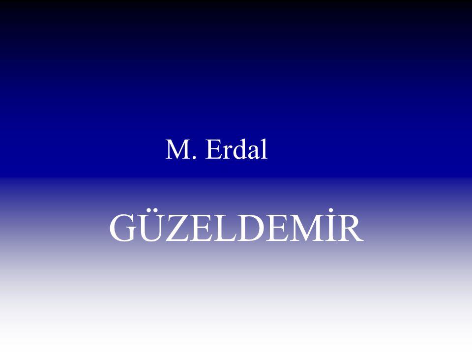 M. Erdal GÜZELDEMİR