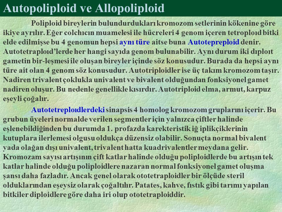 Autopoliploid ve Allopoliploid