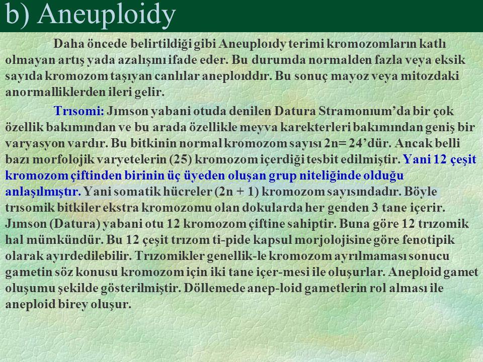 b) Aneuploidy