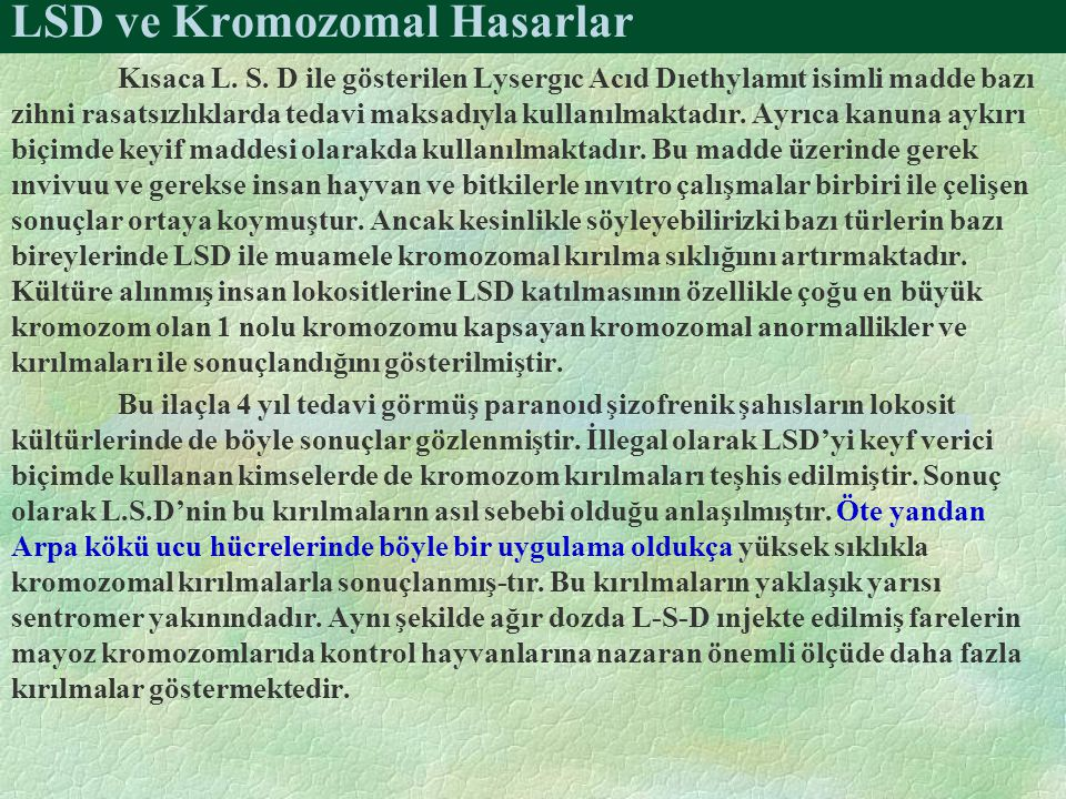 LSD ve Kromozomal Hasarlar