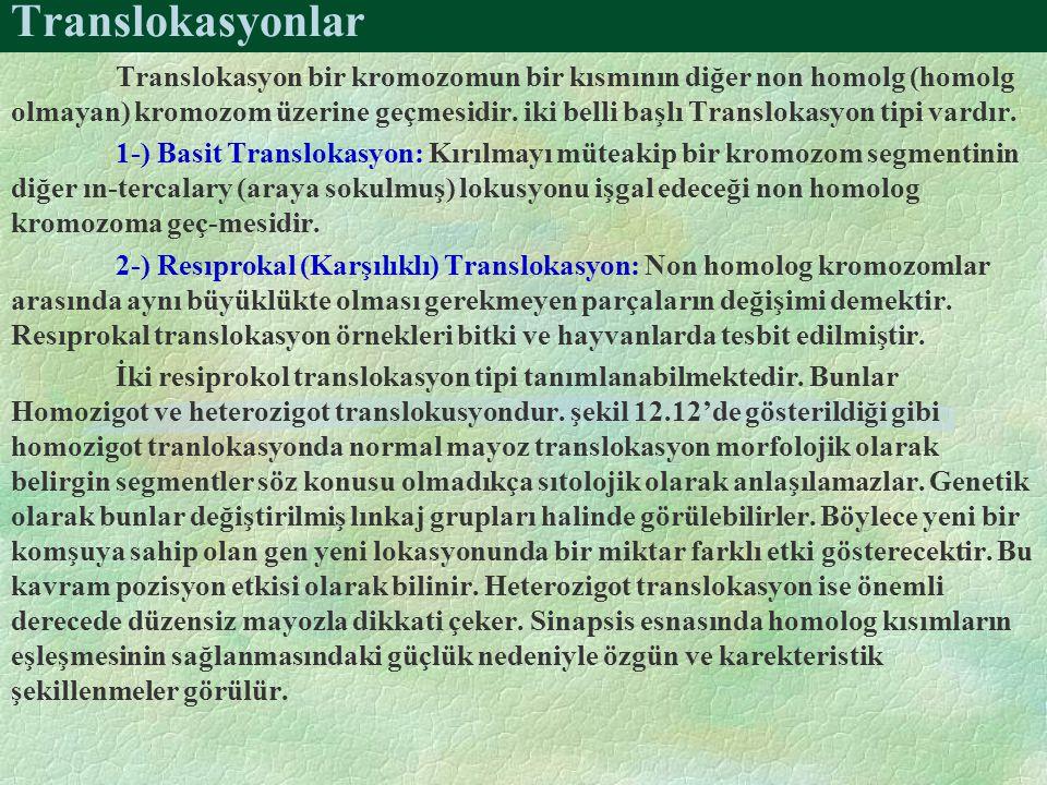 Translokasyonlar