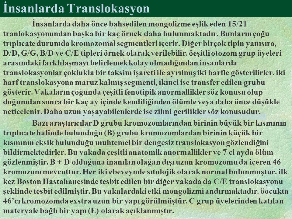 İnsanlarda Translokasyon