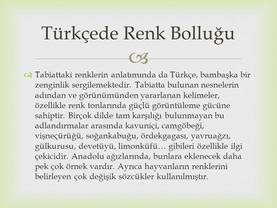 Türkçede Renk Bolluğu