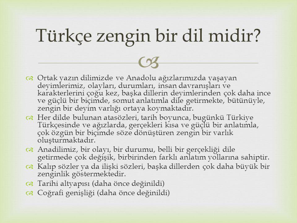 Türkçe zengin bir dil midir