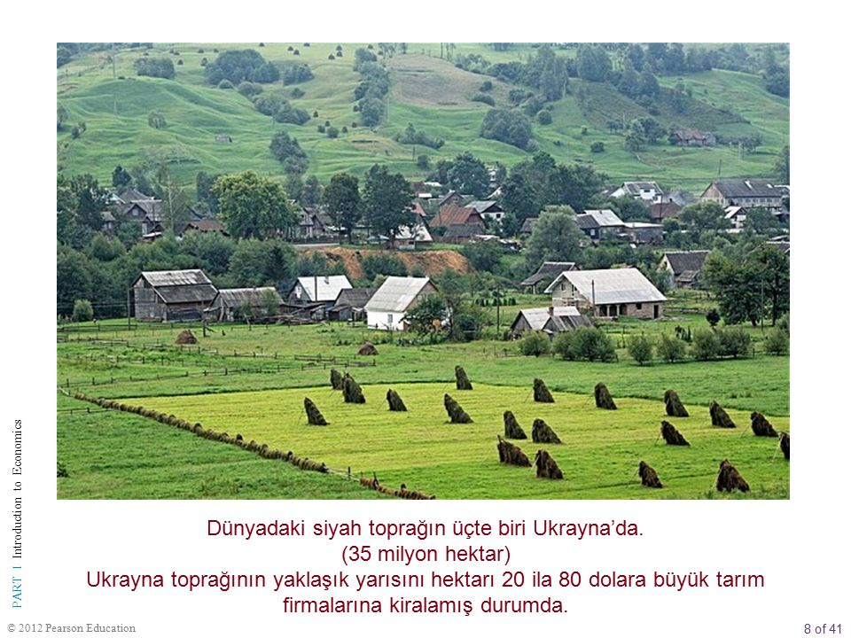 Dünyadaki siyah toprağın üçte biri Ukrayna'da