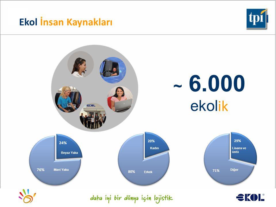 ~ 6.000 ekolik Ekol İnsan Kaynakları Kadın Lisans ve üstü Beyaz Yaka
