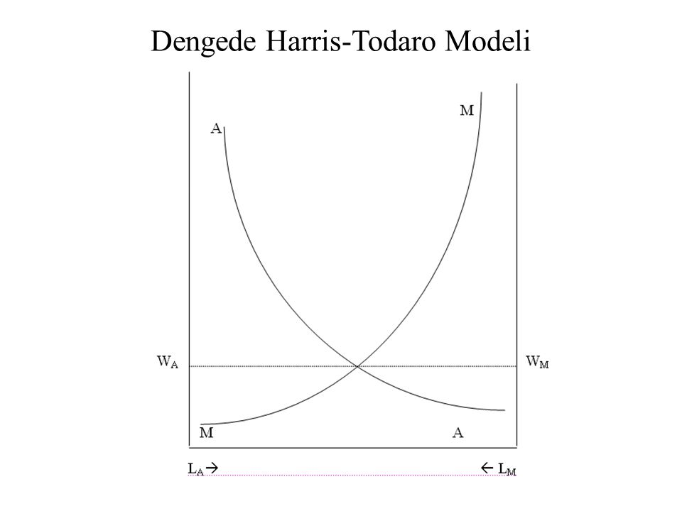 Dengede Harris-Todaro Modeli