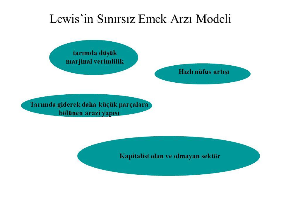 Lewis'in Sınırsız Emek Arzı Modeli