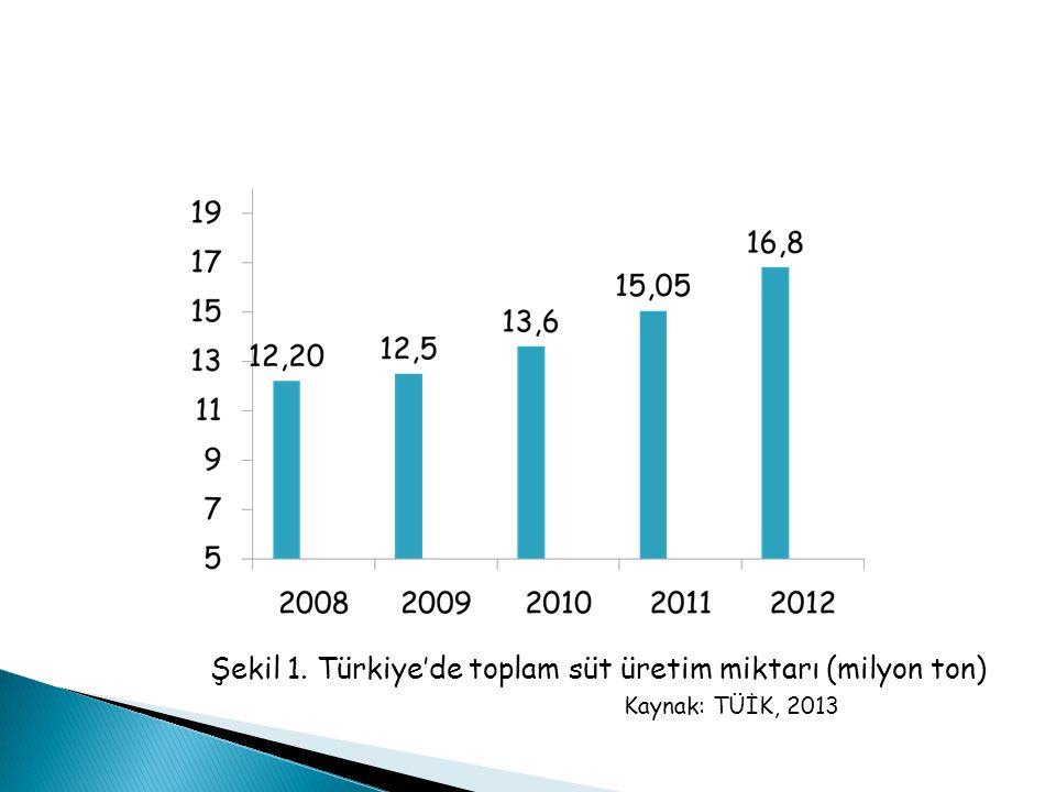 Şekil 1. Türkiye'de toplam süt üretim miktarı (milyon ton)