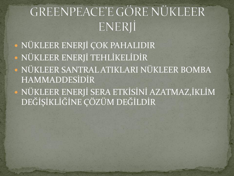 GREENPEACE'E GÖRE NÜKLEER ENERJİ