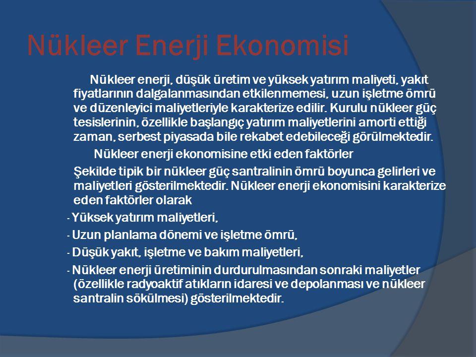 Nükleer Enerji Ekonomisi