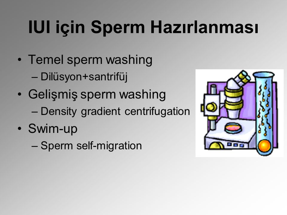IUI için Sperm Hazırlanması