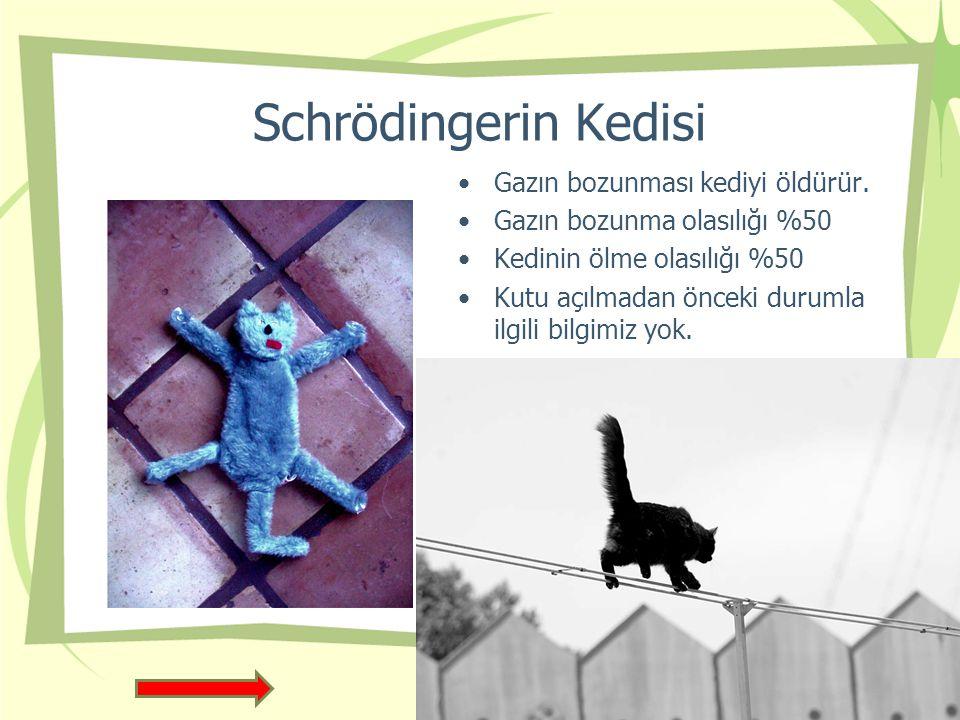 Schrödingerin Kedisi Gazın bozunması kediyi öldürür.