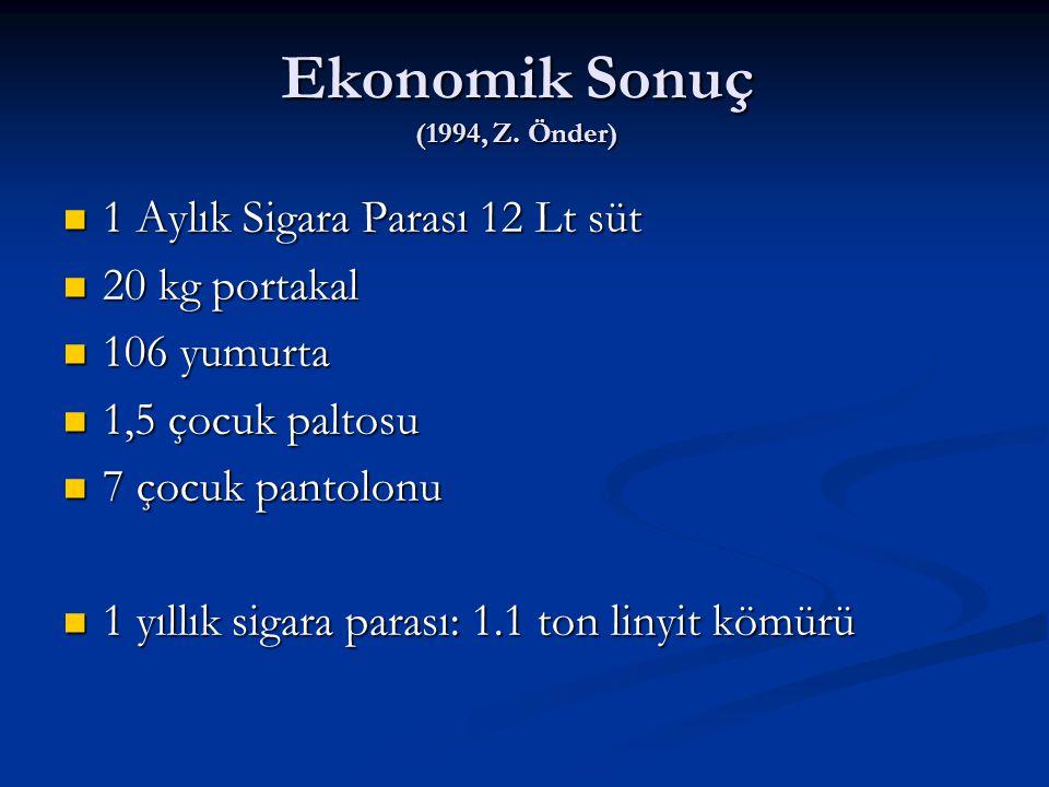 Ekonomik Sonuç (1994, Z. Önder)