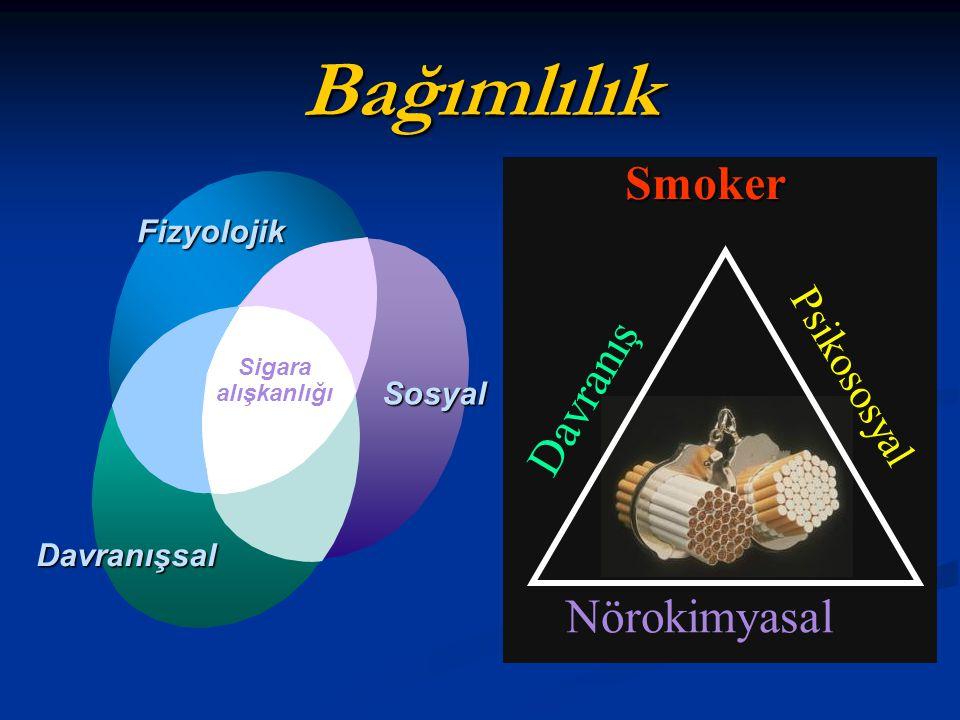 Bağımlılık Smoker Davranış Nörokimyasal Psikososyal Fizyolojik Sosyal