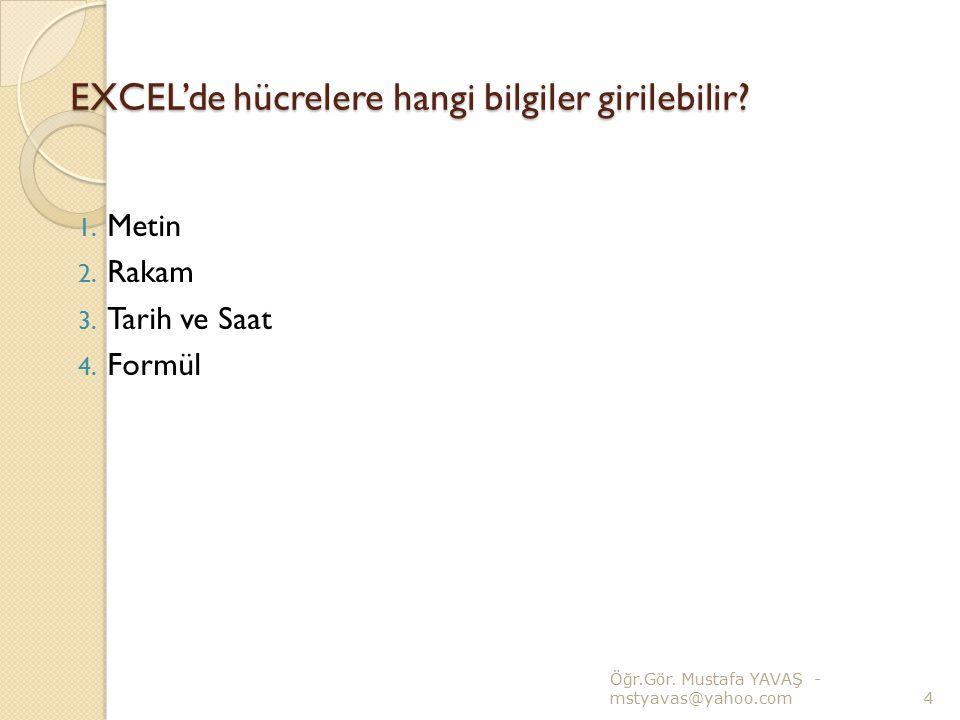 EXCEL'de hücrelere hangi bilgiler girilebilir