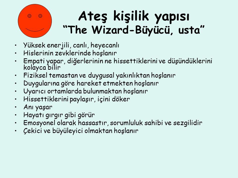 Ateş kişilik yapısı The Wizard-Büyücü, usta