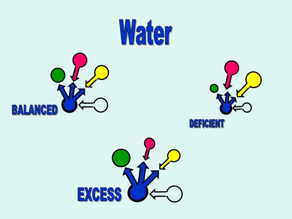 Water BALANCED DEFICIENT EXCESS