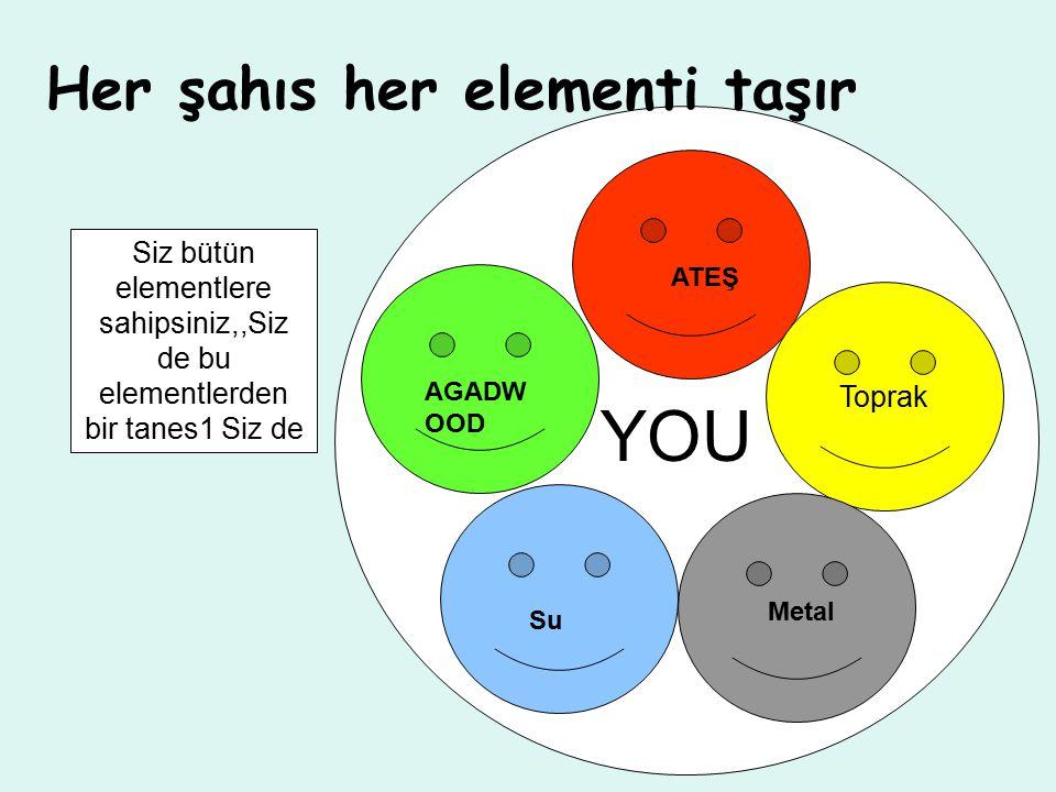 Her şahıs her elementi taşır