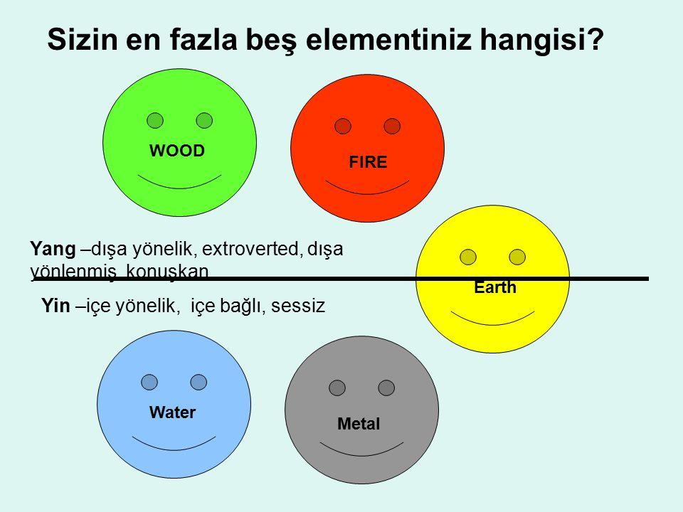 Sizin en fazla beş elementiniz hangisi