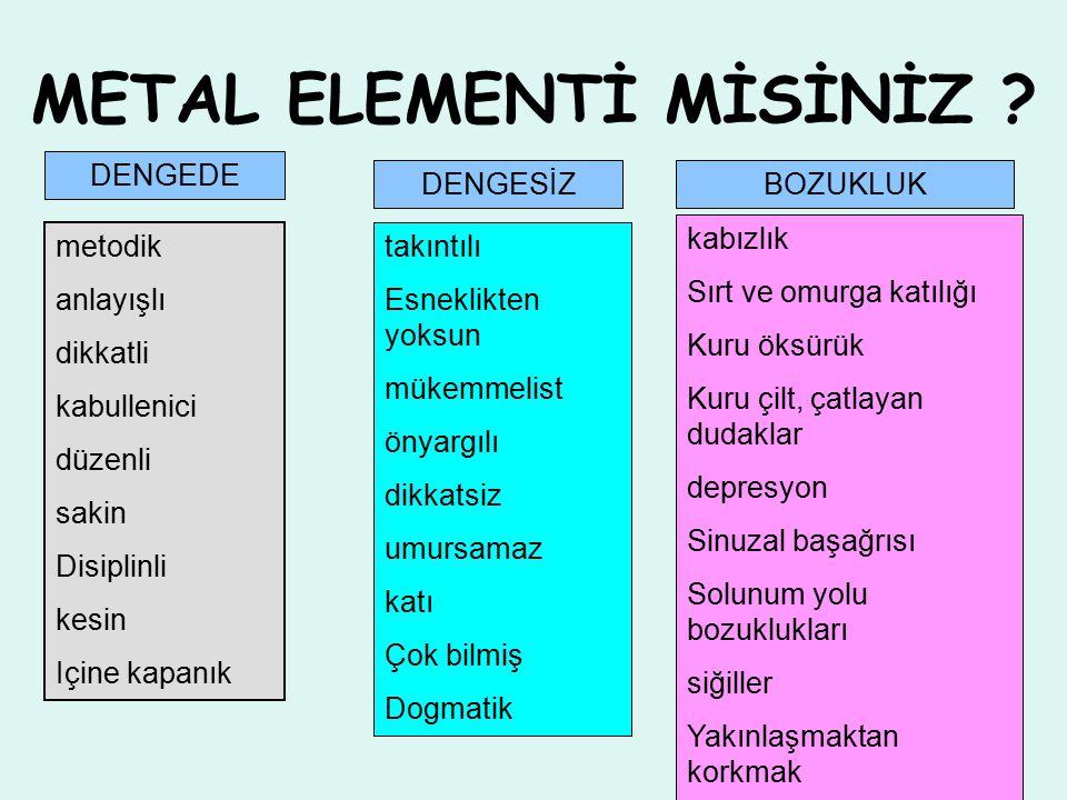 METAL ELEMENTİ MİSİNİZ