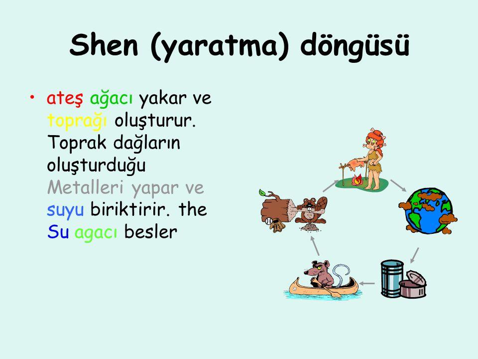 Shen (yaratma) döngüsü