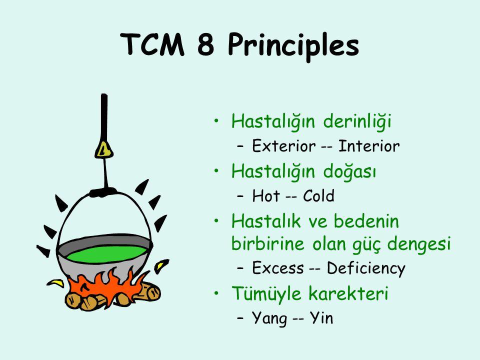 TCM 8 Principles Hastalığın derinliği Hastalığın doğası