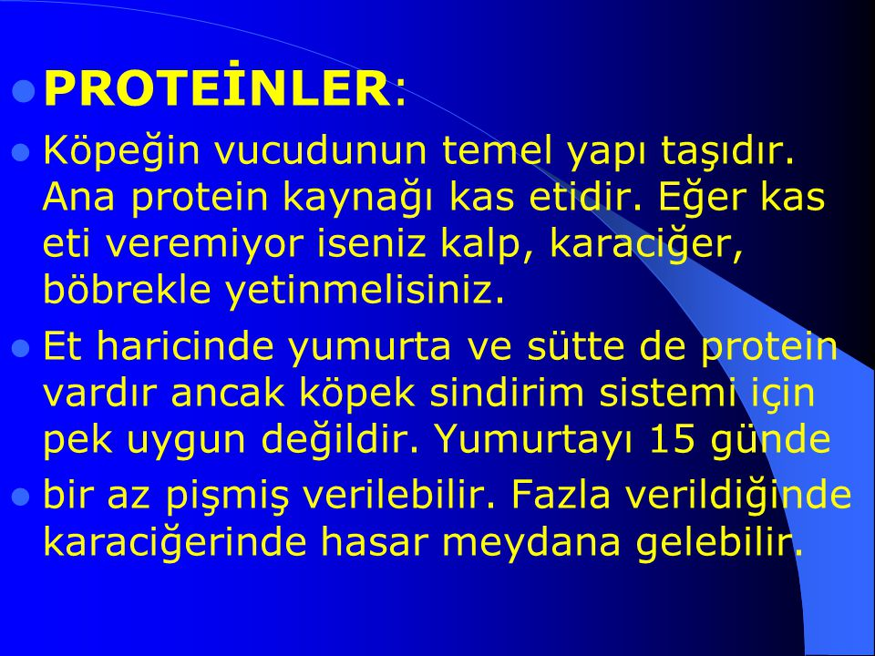 PROTEİNLER: