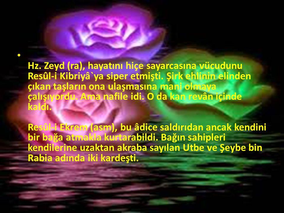 Hz. Zeyd (ra), hayatını hiçe sayarcasına vücudunu Resûl-i Kibriyâ`ya siper etmişti.