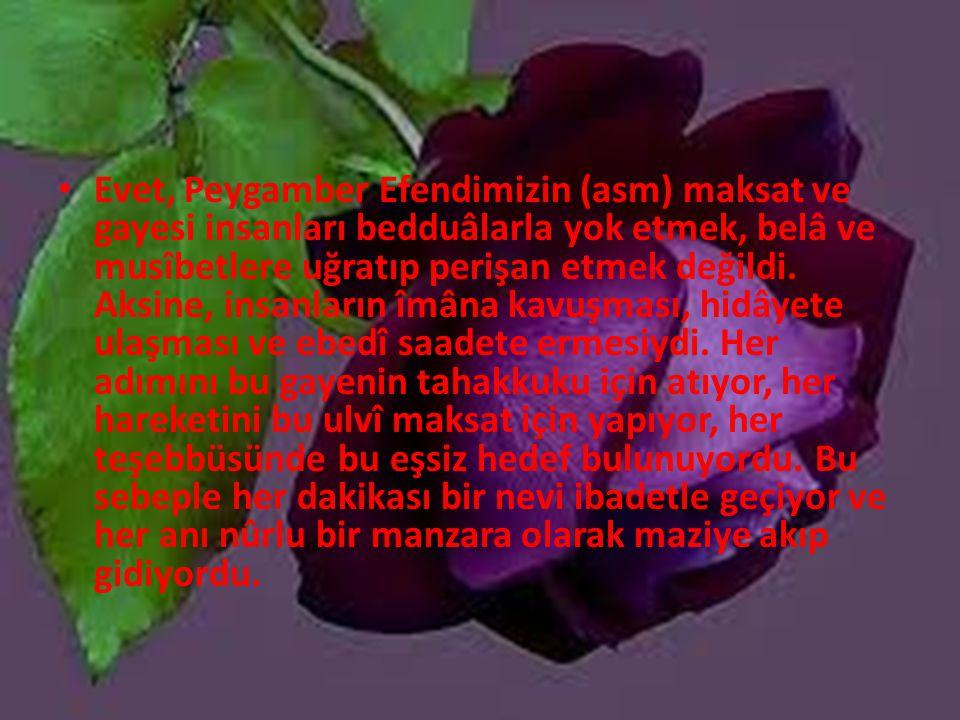 Evet, Peygamber Efendimizin (asm) maksat ve gayesi insanları bedduâlarla yok etmek, belâ ve musîbetlere uğratıp perişan etmek değildi.