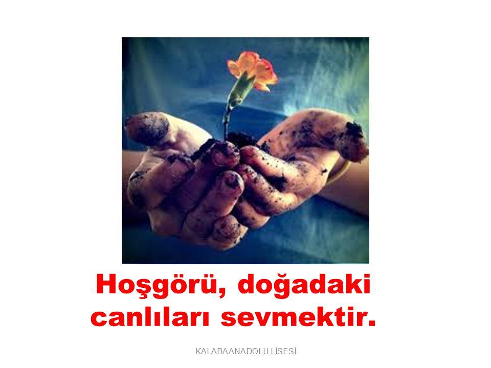 Hoşgörü, doğadaki canlıları sevmektir.