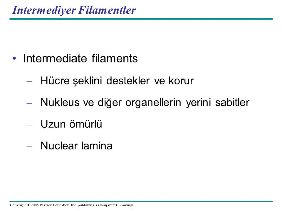 Intermediyer Filamentler