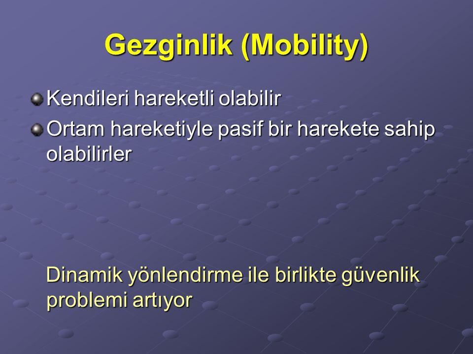 Gezginlik (Mobility) Kendileri hareketli olabilir