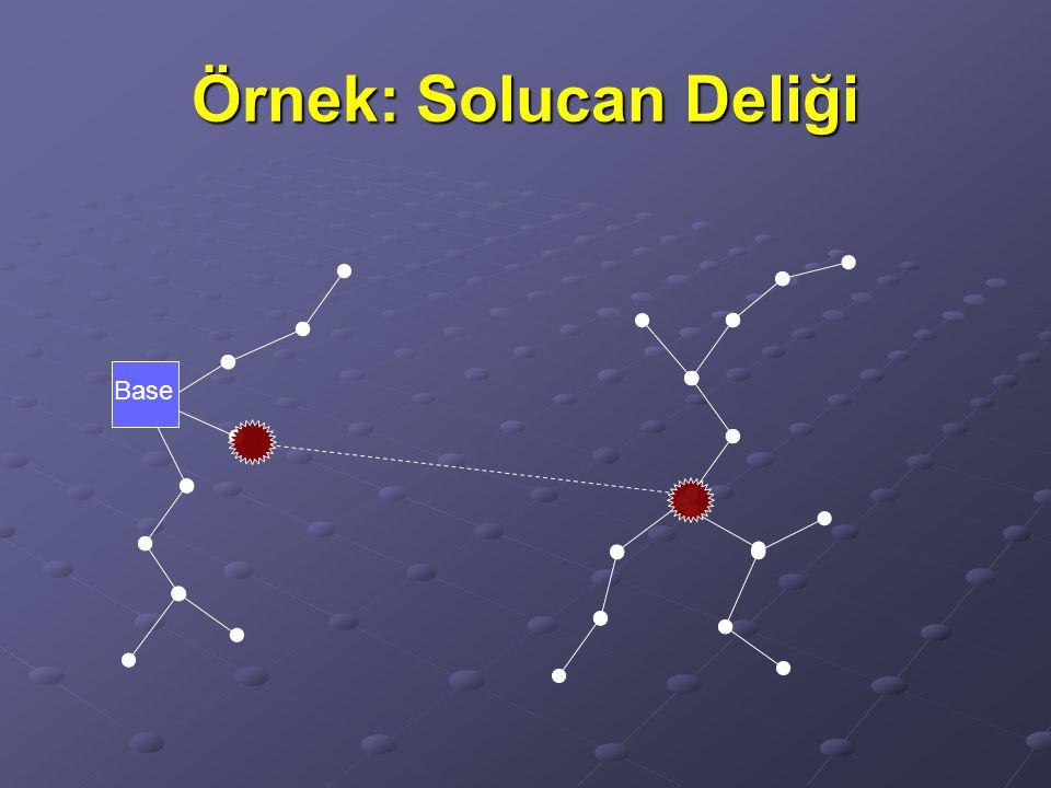 Örnek: Solucan Deliği Base