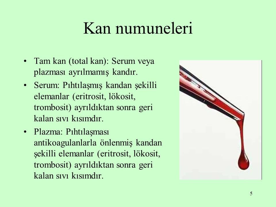 Kan numuneleri Tam kan (total kan): Serum veya plazması ayrılmamış kandır.