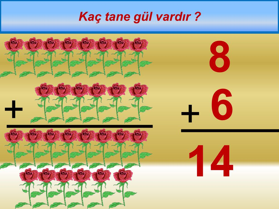 Kaç tane gül vardır 8 6 + + 14