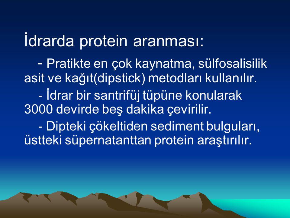İdrarda protein aranması: