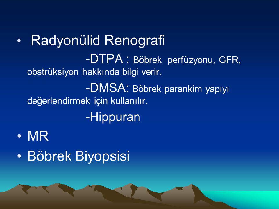 MR Böbrek Biyopsisi Radyonülid Renografi