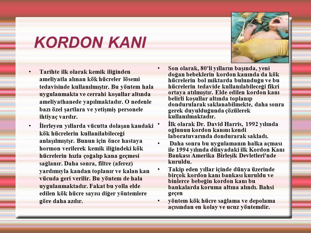 KORDON KANI