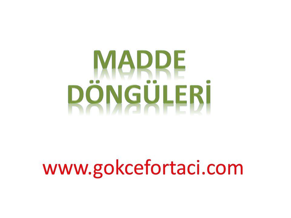 MADDE DÖNGÜLERİ www.gokcefortaci.com