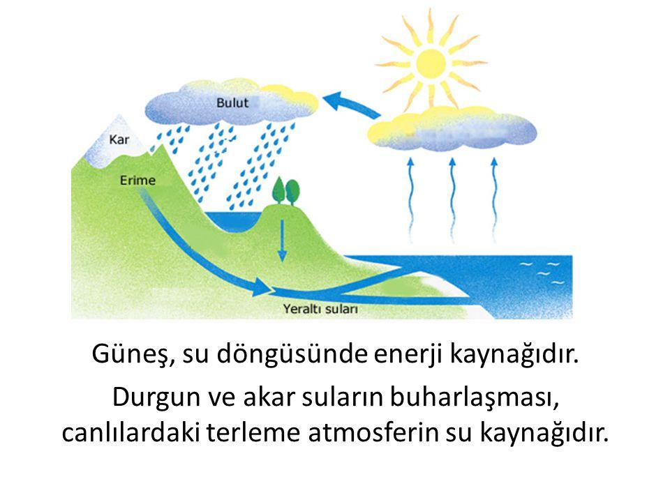 Güneş, su döngüsünde enerji kaynağıdır