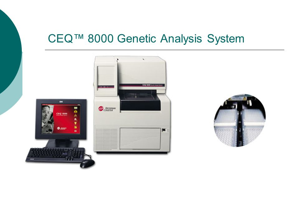 CEQ™ 8000 Genetic Analysis System