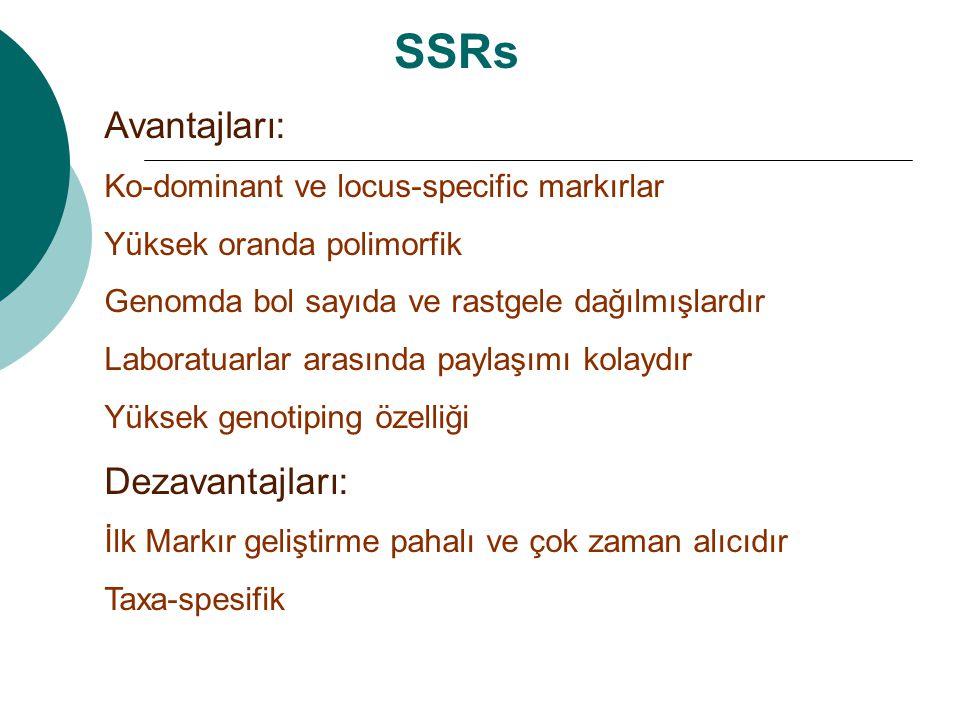 SSRs Avantajları: Dezavantajları: