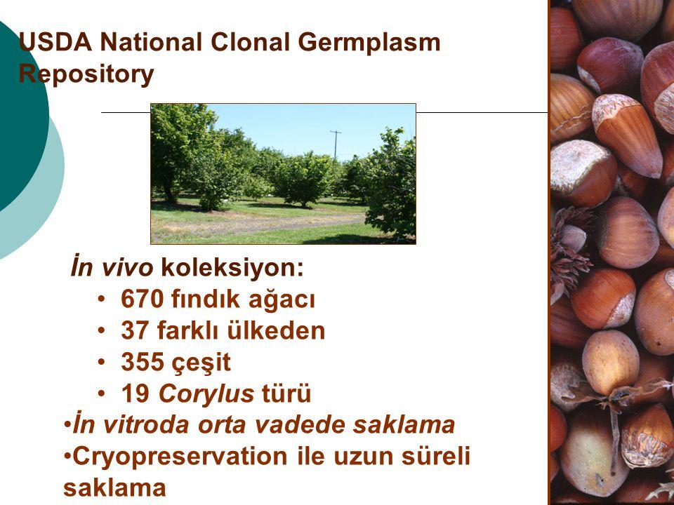 USDA National Clonal Germplasm Repository