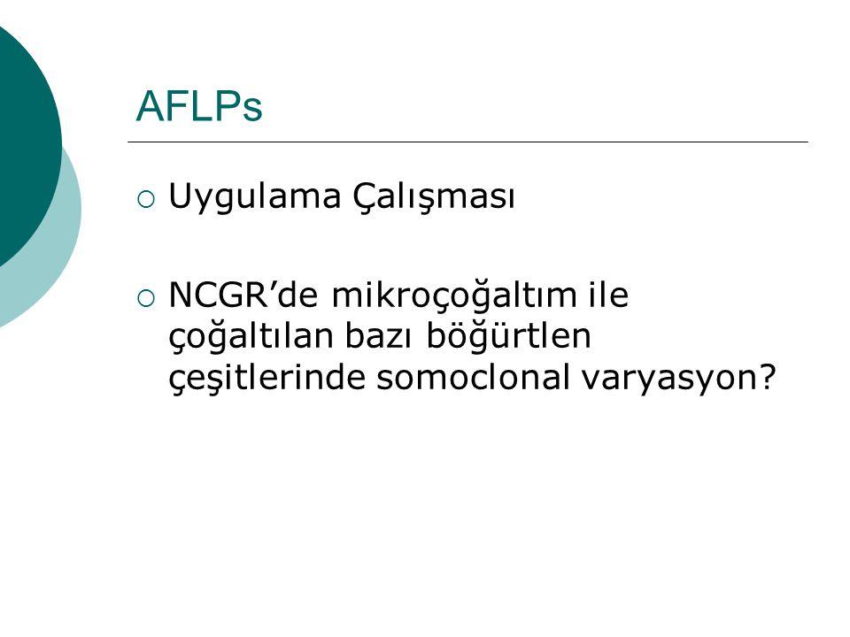 AFLPs Uygulama Çalışması