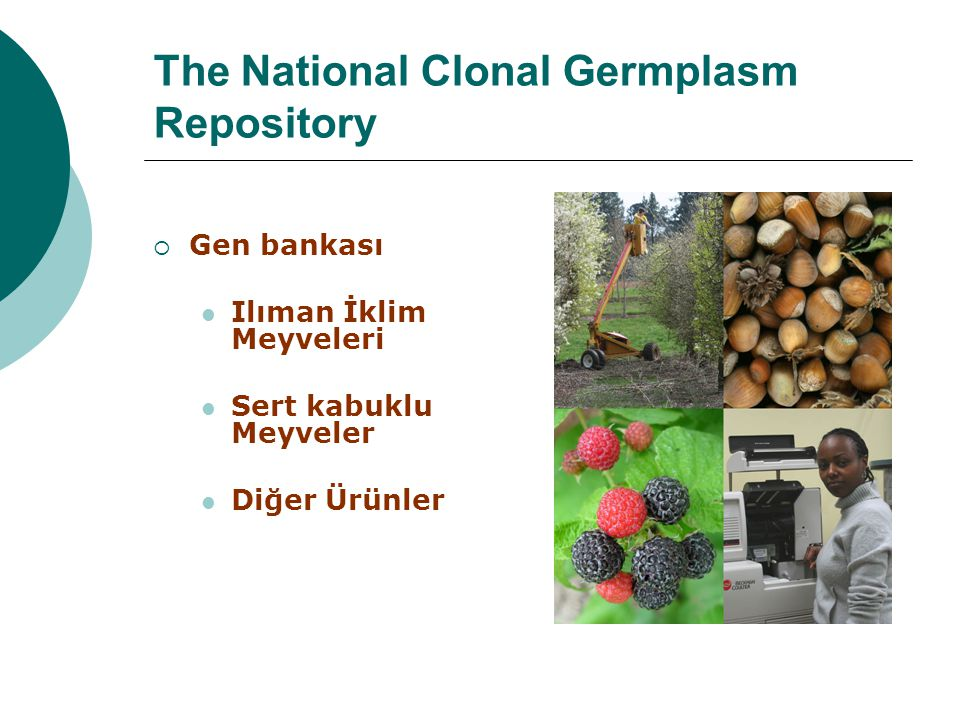 The National Clonal Germplasm Repository