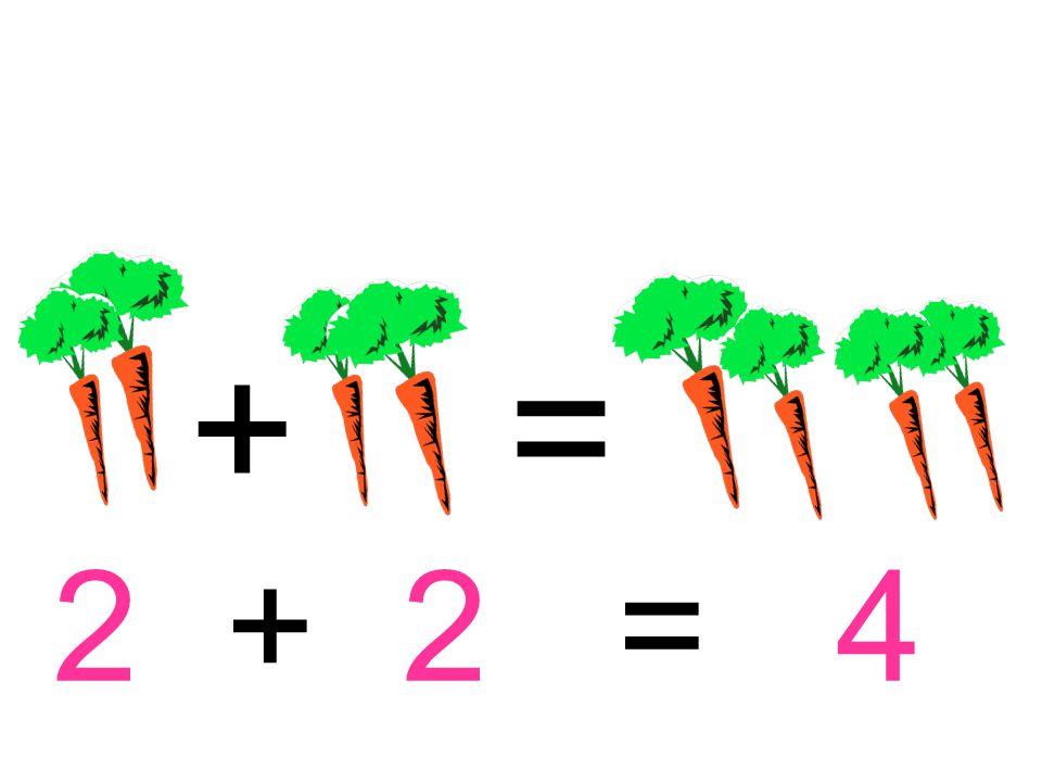 + = 2 + 2 = 4