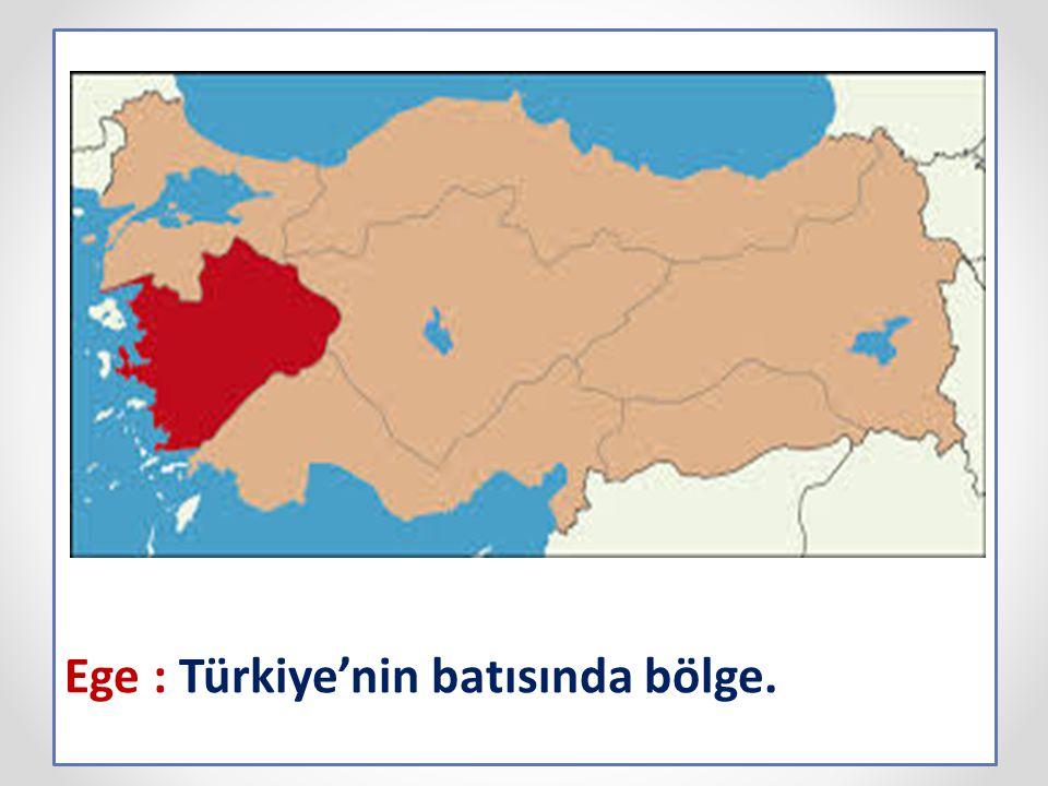 Ege : Türkiye'nin batısında bölge.
